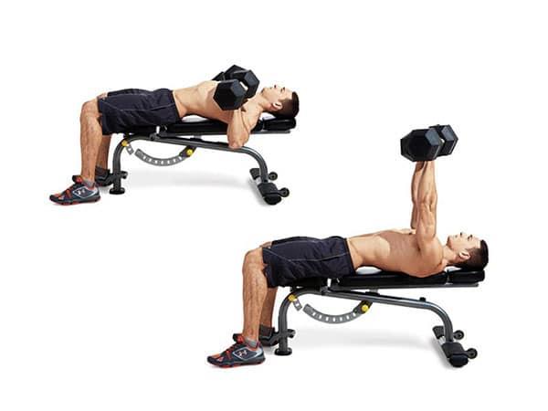 برنامه -دنسازی-برای-کاهش-وزن-پرس-با-دمبل-روی-نیمکت