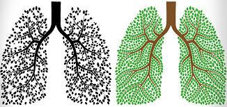 تقویت ریه ها و تنفس بهتر با چند روش خانگی