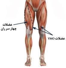 حرکاتی برای تقویت عضلات ران