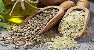 مواد غذایی مفید برای سلامت پوست ، مو و ناخن